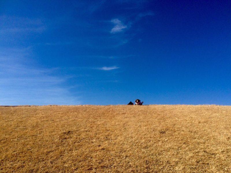 真っ青な空と大地