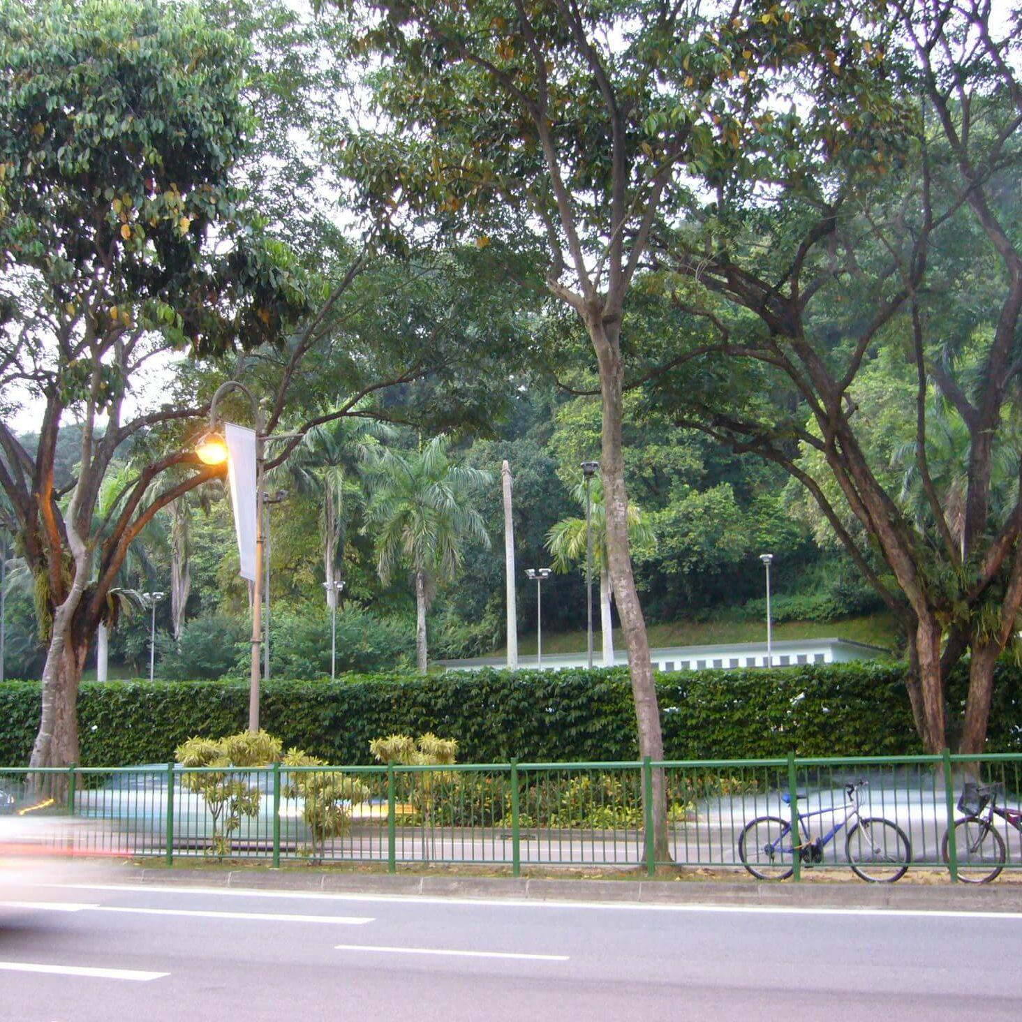 シンガポール動物検疫