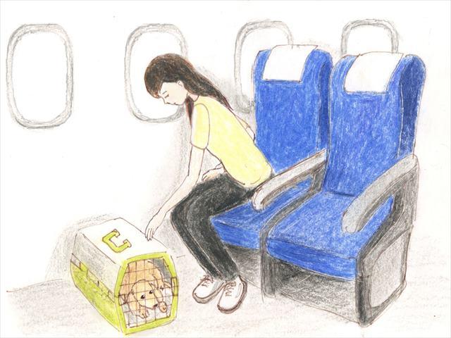 帰国の飛行機の中。リンスは座席に下に。