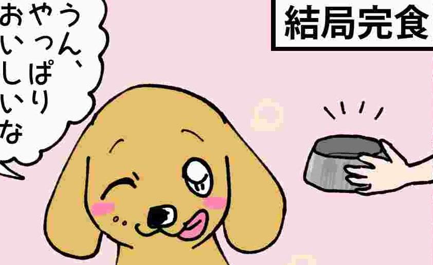 あいちゃん6コマ漫画9 「日常の回復」