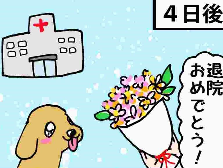 あいちゃん6コマ漫画8 「乗り越える」